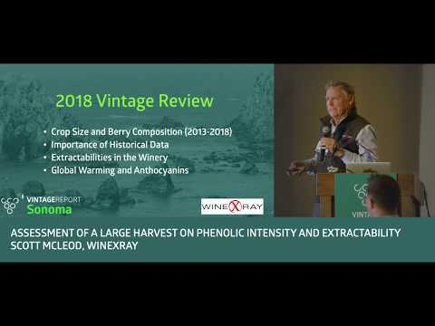 2018 Sonoma Vintage Report - Scott McLeod