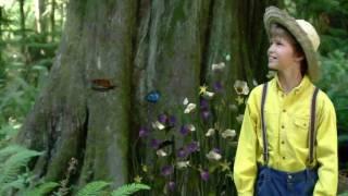 Enya -  Fairytale  -  Cuento de hadas