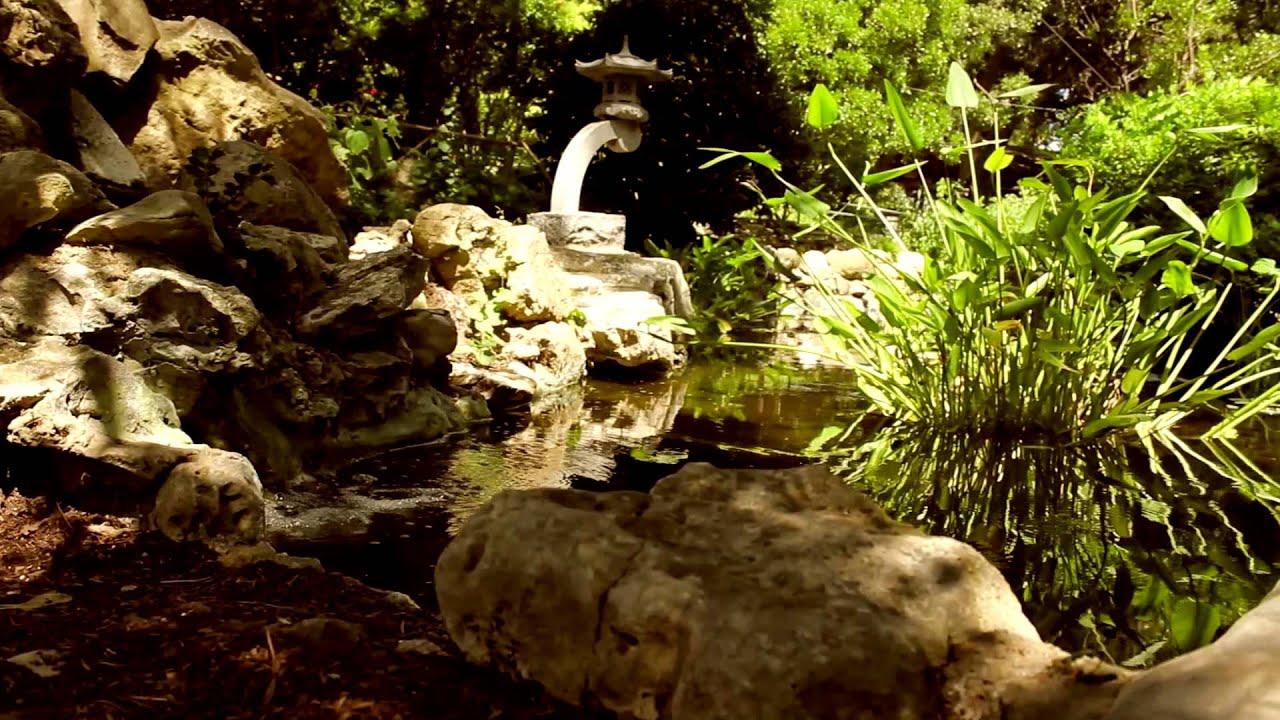 Visit to the Zilker Botanical Garden - YouTube