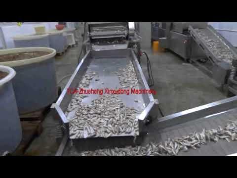 Fish Washing Machine Fish Drying Machine Fish Frying Machine