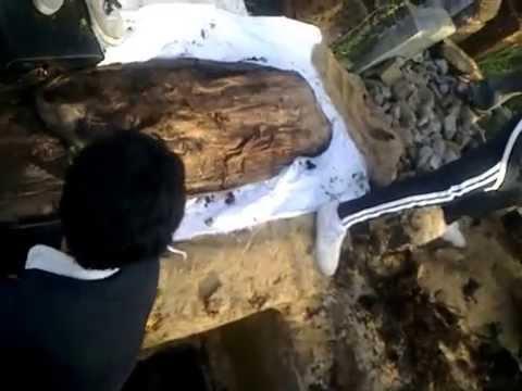 Bốc mộ bà ngoại Trần Thị Này ở Tây Ninh