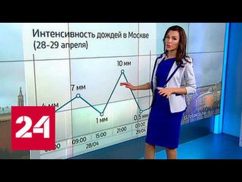 """""""Погода 24"""": опасные дожди"""