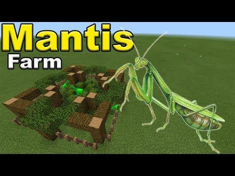 How To Make A PRAYING MANTIS FARM | Minecraft PE