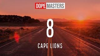 Cape Lions 8.mp3