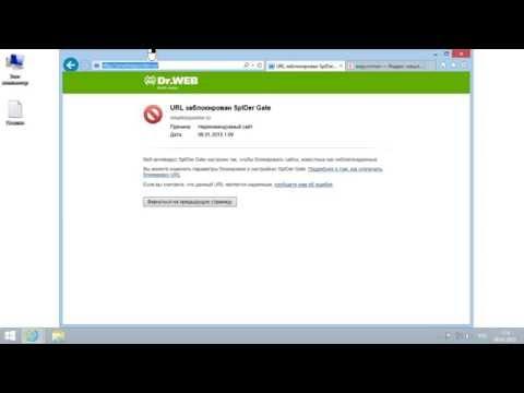 URL заблокирован SpIDer Gate — Dr Web 9: настройка белого списка