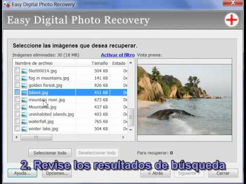 Easy Digital Photo Recovery Crack