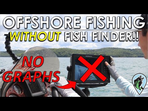 Offshore Bass Fishing Made Simple | No Fish Finder Needed