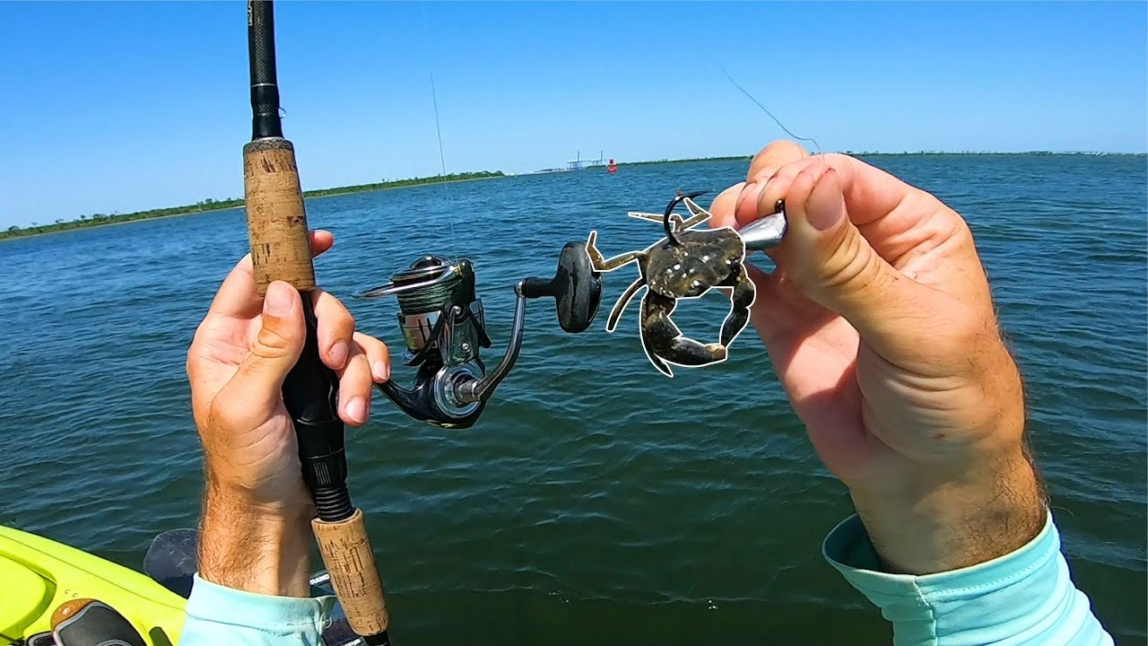 Lowcountry Harbor Fishing with Crabs for What Ever Bites - GIVEAWAY!!!