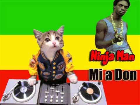Ninja Man - Mi a Don