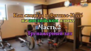 Смотреть видео статьи на тему фитнеса