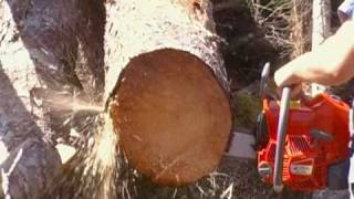 Efco 82cc Chainsaw (First Cuts)
