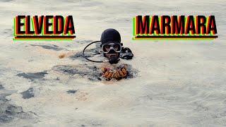 MARMARA'DA ÖLÜM ÇOKTAN BAŞLADI. MÜSİLAJIN BOYUTLARINI GÖSTERMEK İÇİN DALIŞ YAPTIM.