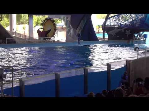 One Ocean - One Song (SeaWorld San Antonio)