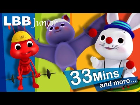 Funny Animals Song | And Lots More Original Songs | From LBB Junior!