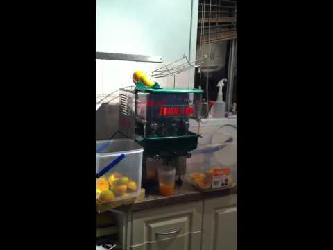 zummit zummo commercial auto juice machine for sale
