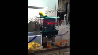 zummit zummo commercial auto juice machine for sale