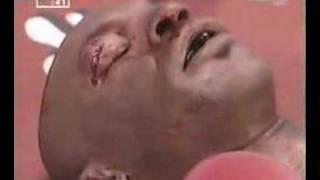 Mike Tyson KO Punch