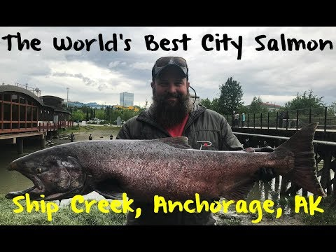 The World's Best City Chinook Fishing: Ship Creek, Anchorage, Alaska