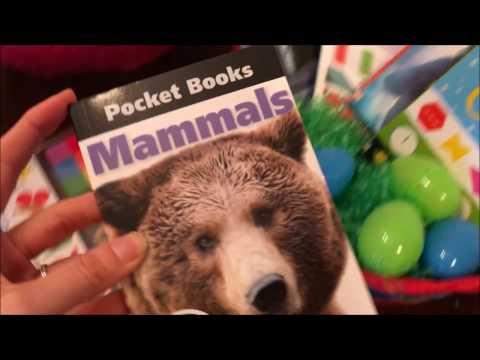 Easter Basket Ideas from Usborne Books