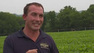 Stories From the Streams: Saving Soil, Saving Streams