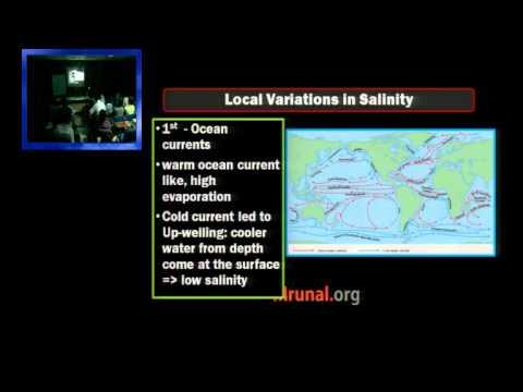 G5/P6: Ocean Water Salinity & Salt Water Budget