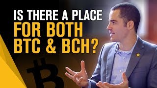 Is there a place for both BTC and BCH? and Roger's 1st business | Roger Ver Interview