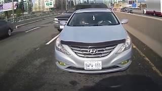 idioti al volante 2017