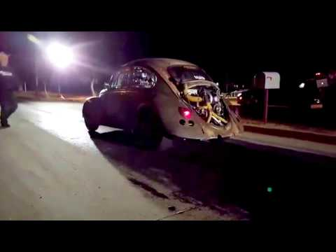 Dung Beetle Launch Slow Mo, Farmtruck Flags