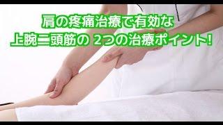 肩の痛みと上腕二頭筋の2つのアプローチポイント! 上腕三頭筋損傷 検索動画 25