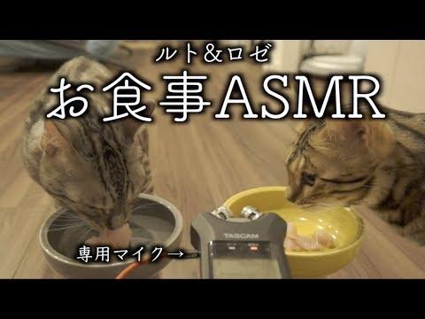 ルトとロゼのASMR〜お食事編〜