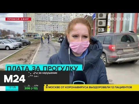 Как могут наказать за нарушение режима самоизоляции - Москва 24