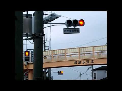 赤川1丁目の先発時差式信号機(カメラ回し無し)posted by elmoandgeorgeql