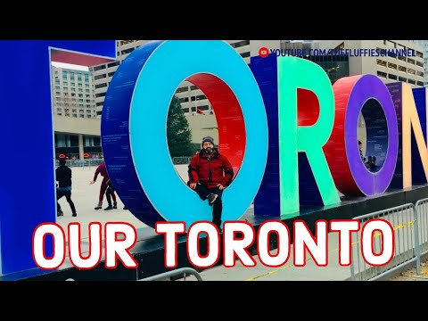 SOME FAVORITE PLACES IN TORONTO | The Fluffies Channel