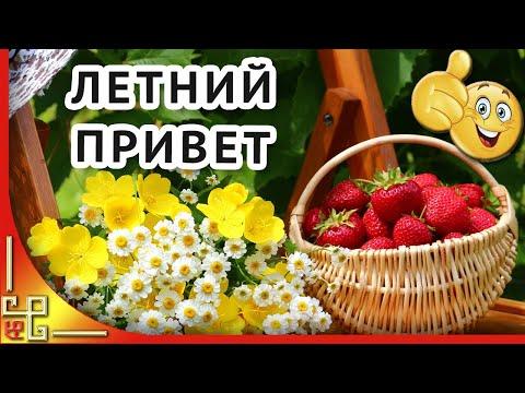 Я желаю тебе бесконечного лета! Позитив для друзей 🌸 Летний приветик тебе от меня