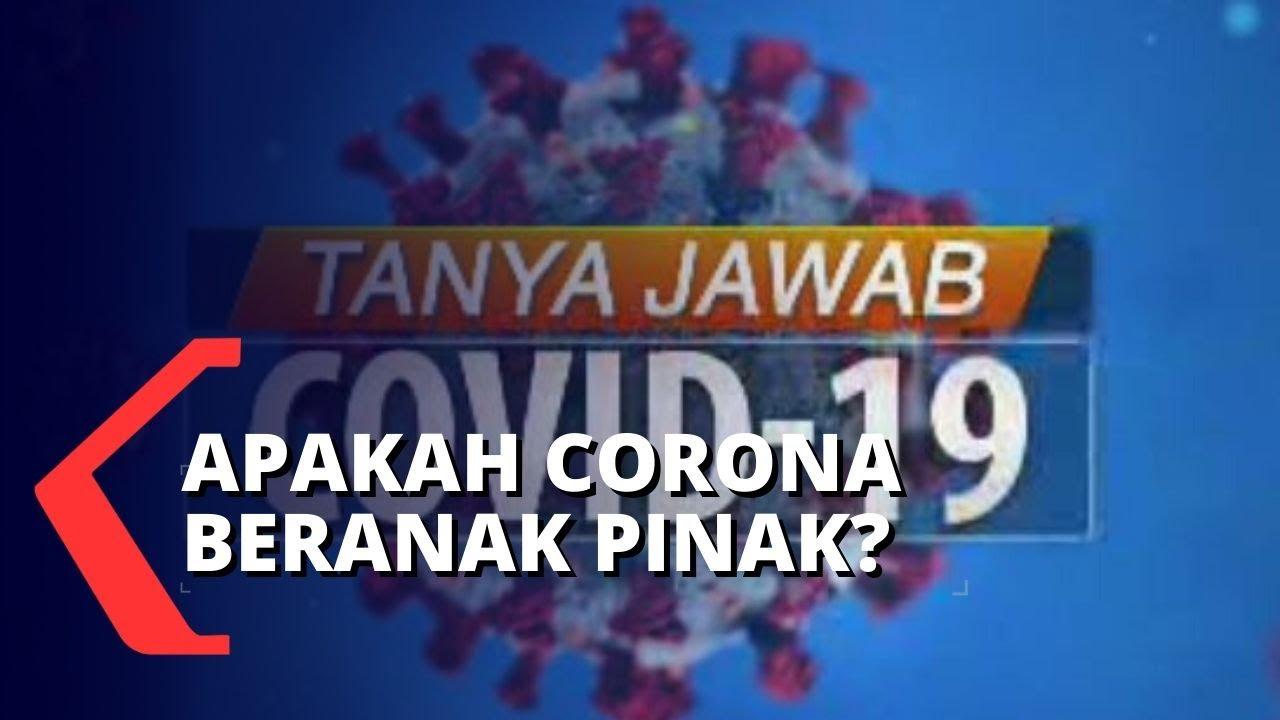 Apakah Virus Corona Bisa Beranak Pinak? - KOMPASTV