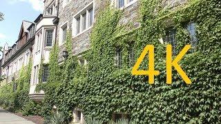 A 4K Tour of Princeton University thumbnail