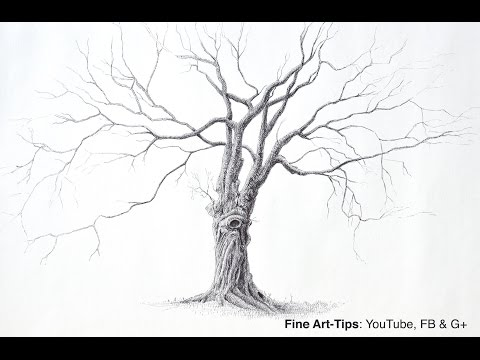How to Draw a Beautiful Tree With Pen - Narrated