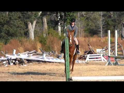 Ann Haller Clinic Jumping Phase