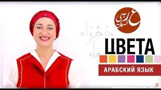Цвета. Видео-урок. Арабский язык