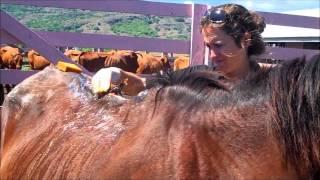 Kiwi Care in Fiji - last call before heading home