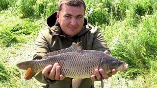 Самая уловистая приманка в действии 2 (Дневник рыболова)