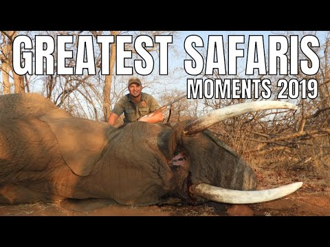 Big Game Hunting in Africa with BoschNel Safaris Promo 2019