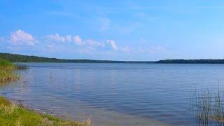 Соленое озеро в Лен. области - Липовское
