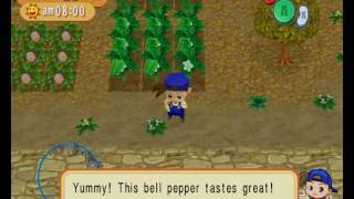 Harvest Moon Magical Melody Gameplay HD - Dolphin r7472 x64