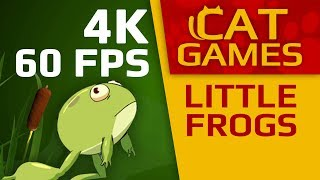 CAT GAMES - 🐸 LITTLE FROGS (VIDEO FOR CATS TO WATCH) 4K 60FPS 1 HOUR