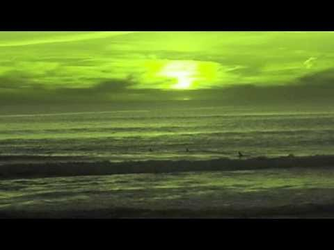 Air Miami - Sea Bird