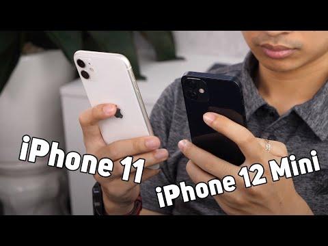 So sánh iPhone 12 mini với iPhone 11 - Chọn cũ mà ngon hay mới cho đẹp?