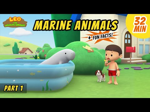 Marine Animals (Part 1/2) - Dugong and more sea animal stories!