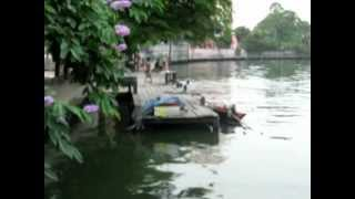 The Khlong at Prakanong. . .