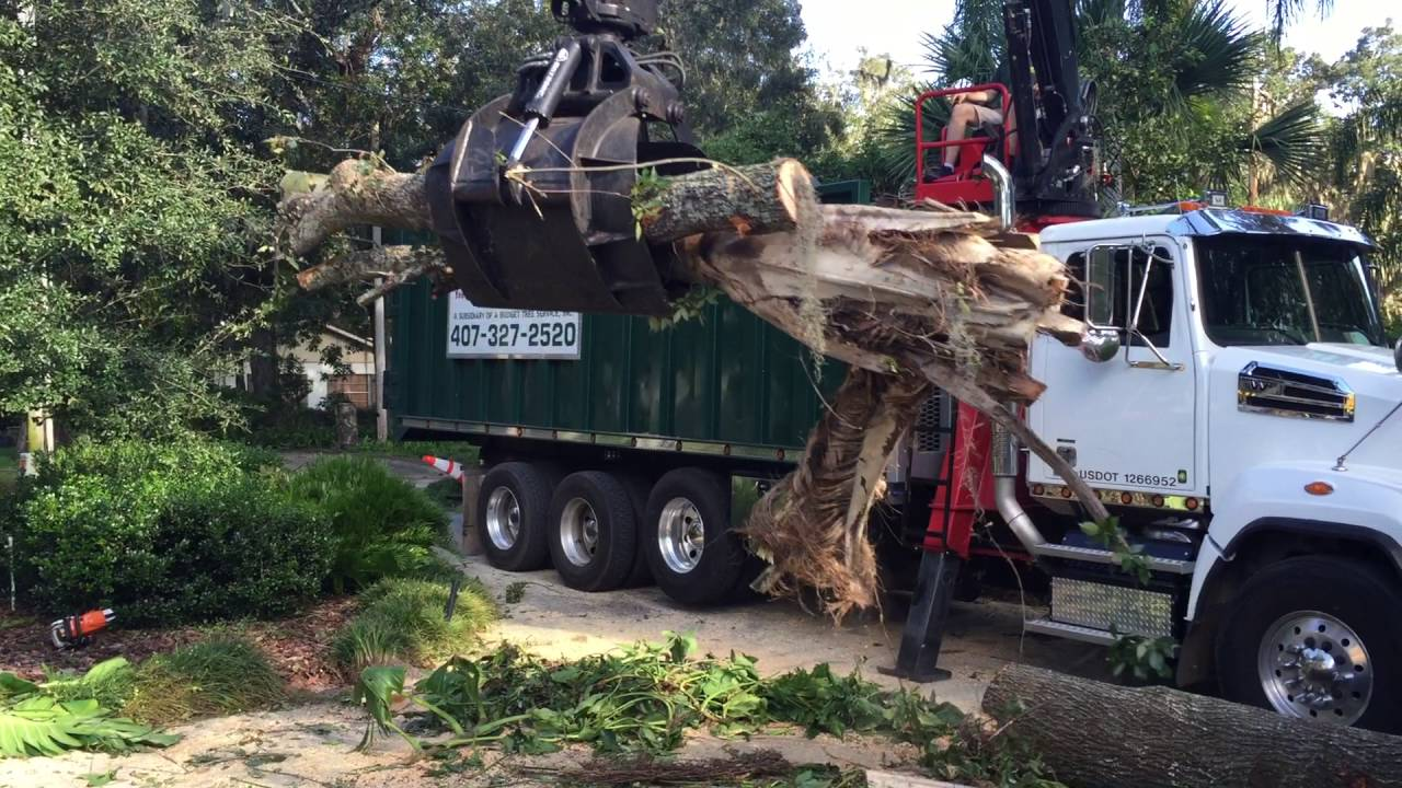 Prentice 2124 log loading for A Budget Tree Service